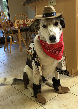 Sheriff Jake